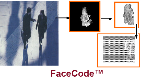 FaceCode+text